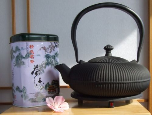 Silver needle Tea Trivet & Tetsubin Cast Iron Zen Mountain black teapot kettle 0.8L Japanese style